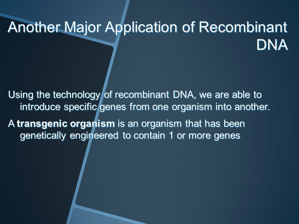 Another Major Application of Recombinant DNA