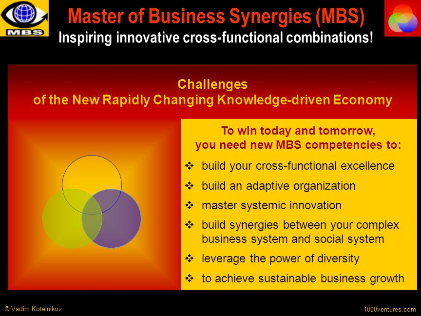 Master of Business Synergies (MBS) Inspiring innovative cross-functional combinations!