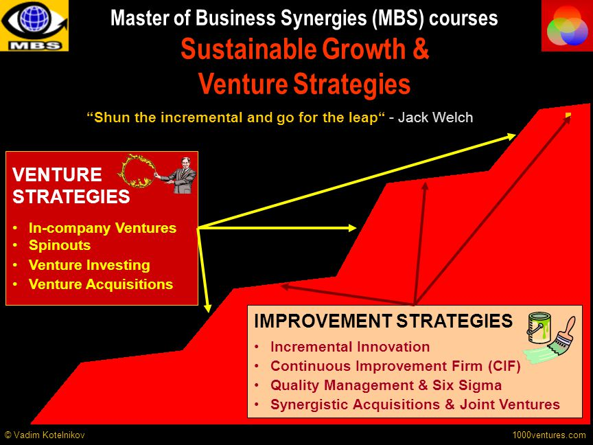 Master of Business Synergies (MBS) courses Sustainable Growth & Venture Strategies