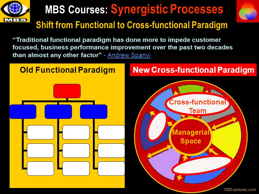 MBS Courses: Synergistic Processes
