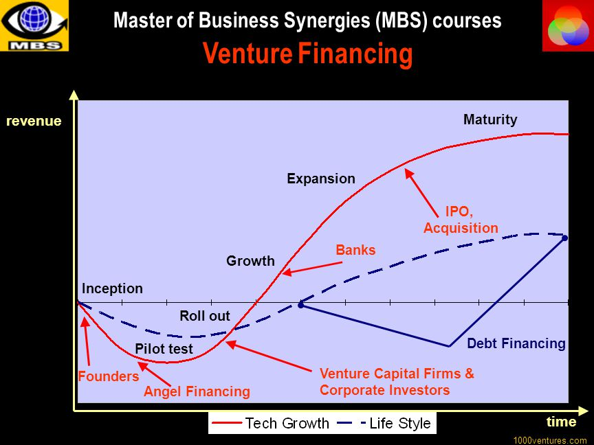 Master of Business Synergies (MBS) courses Venture Financing