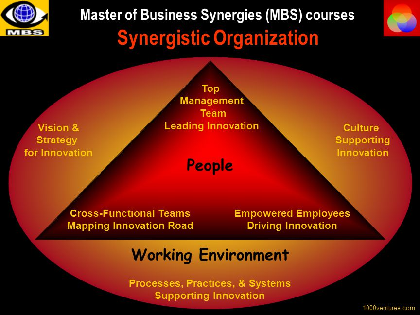 Master of Business Synergies (MBS) courses Synergistic Organization