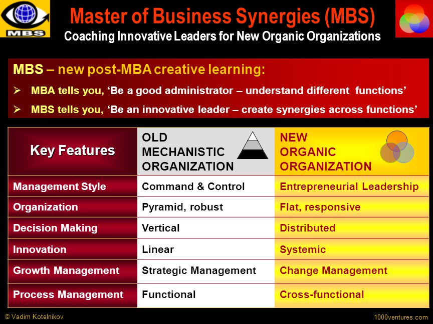 Master of Business Synergies (MBS) Coaching Innovative Leaders for New Organic Organizations