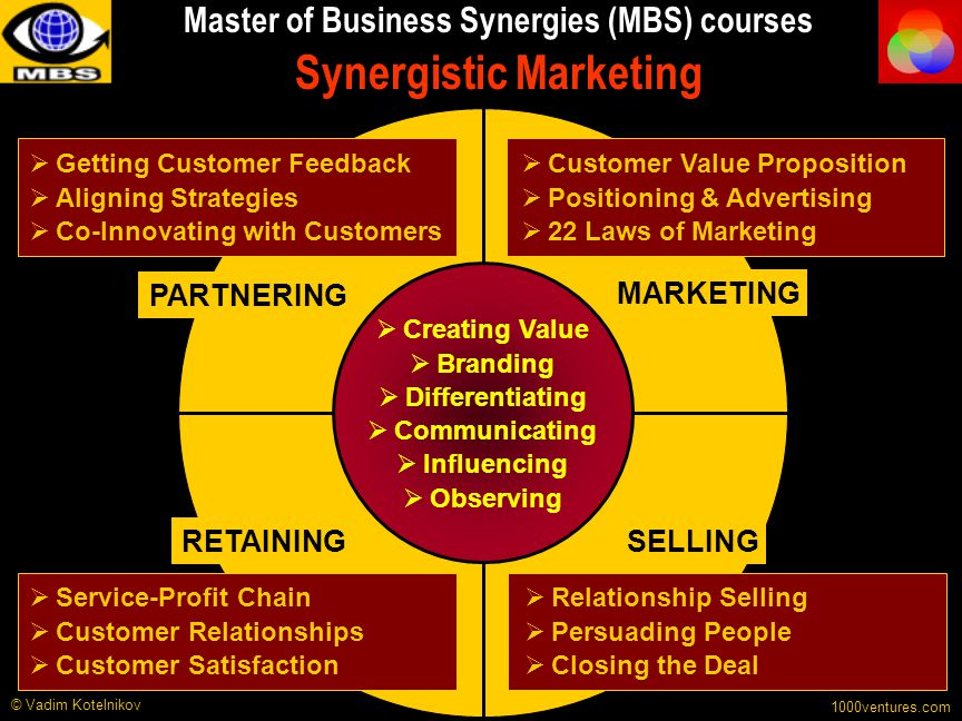Master of Business Synergies (MBS) courses Synergistic Marketing