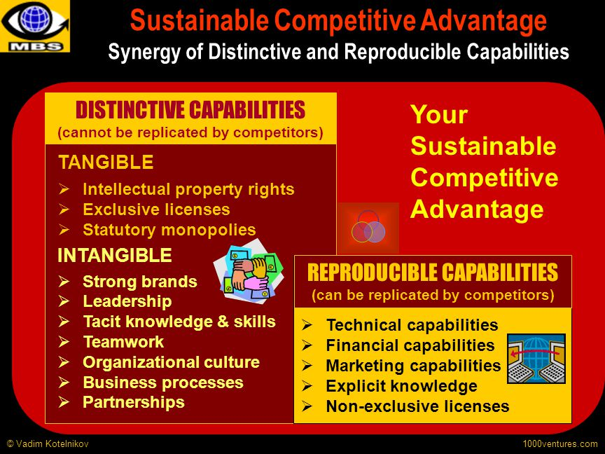 Sustainable Competitive Advantage Synergy of Distinctive and Reproducible Capabilities