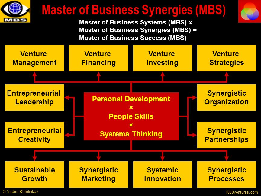 Master of Business Synergies (MBS)