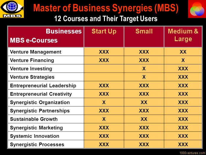 Master of Business Synergies (MBS) 12 Courses and Their Target Users