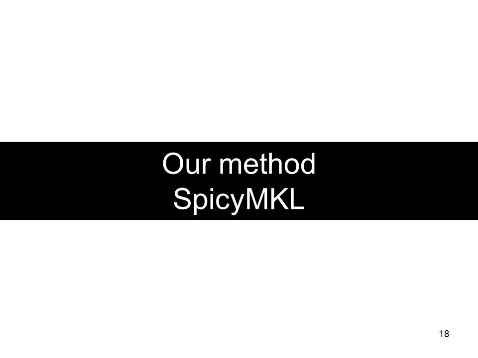 Our method SpicyMKL