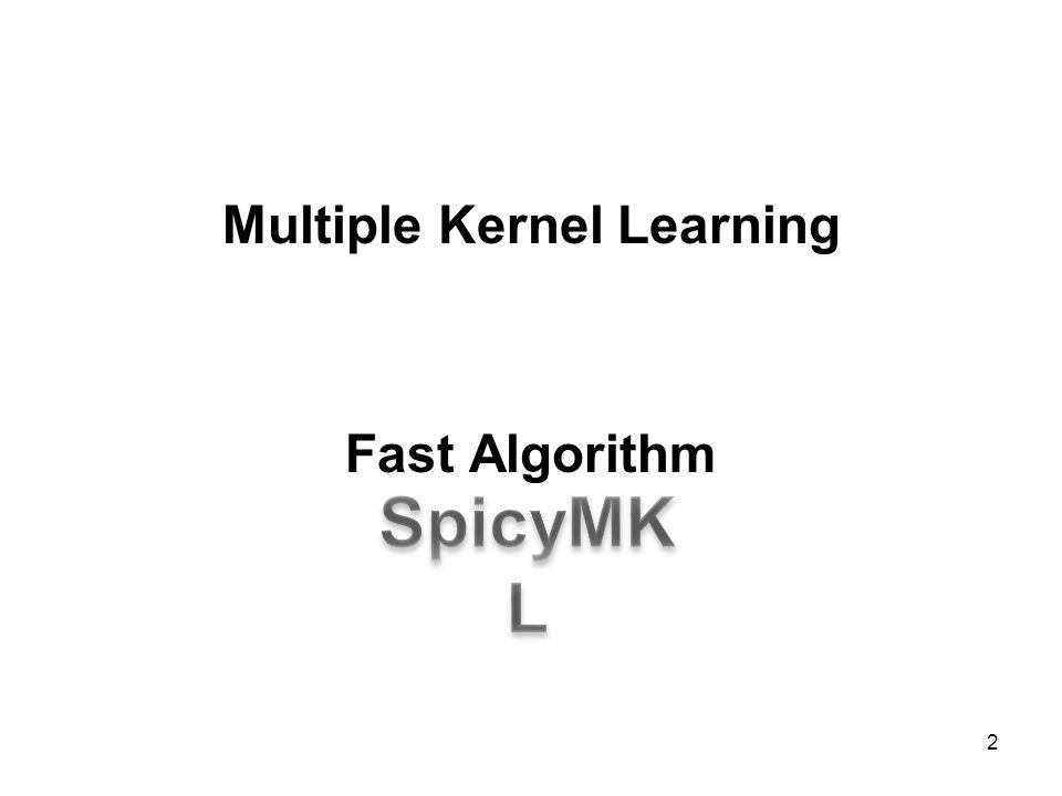 Multiple Kernel Learning Fast Algorithm
