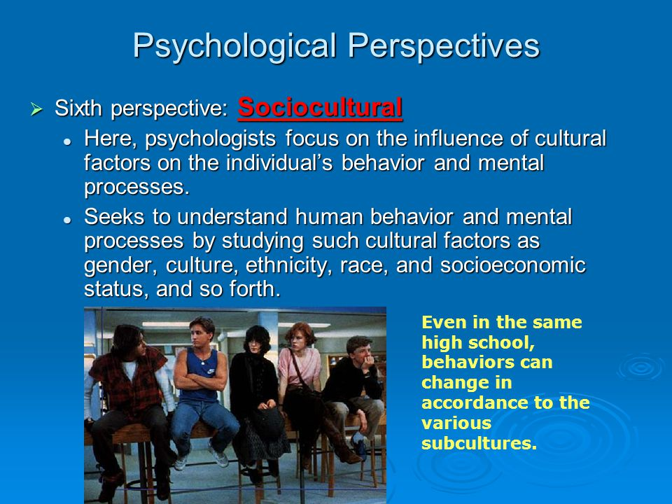 the scientific definition of gender As a term it is used to refer to a wide range of phenomena, stemming from multiple and even competing meanings of gender and politics its definition is further complicated by the emergence of similar and related phrases like women and politics, gender and politics, and the politics of gender.