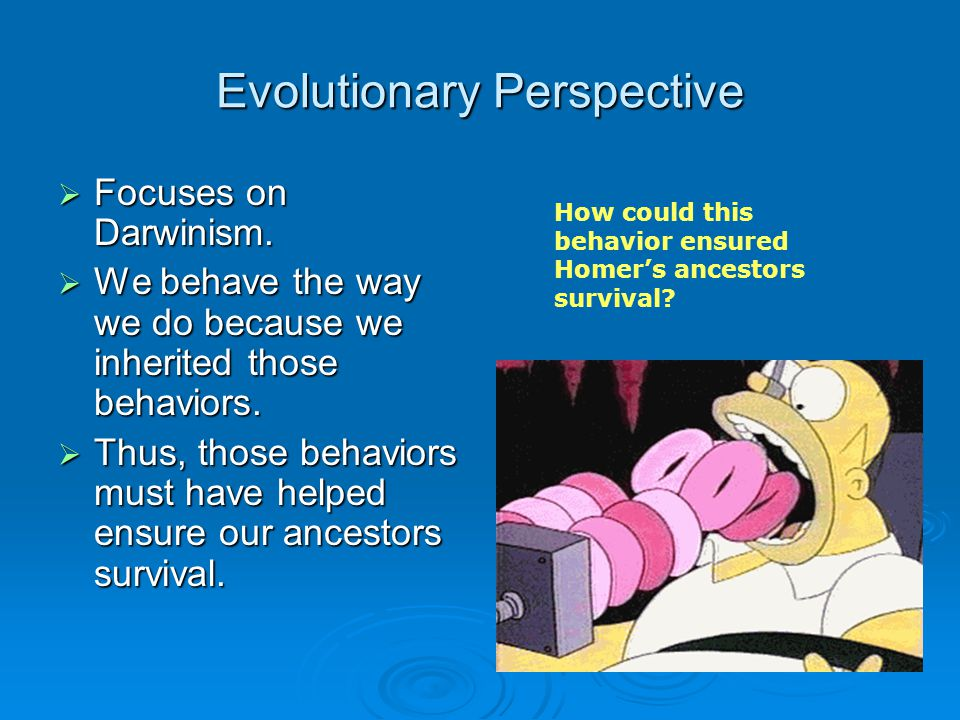 Evolutionary Perspective