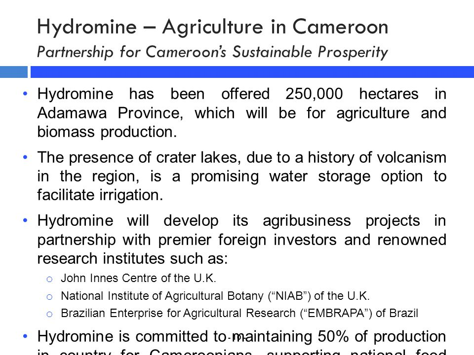 Hydromine – Agriculture in Cameroon Partnership for Cameroon's Sustainable Prosperity