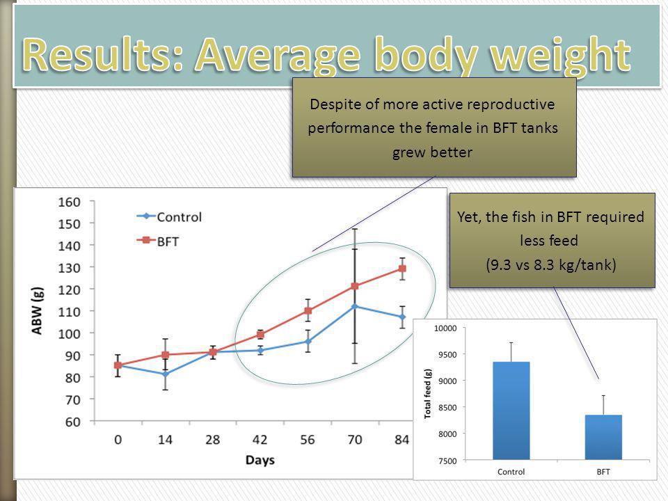 Results: Average body weight