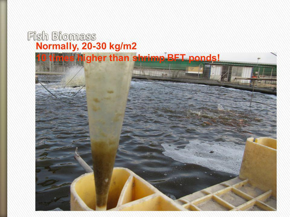 Fish Biomass Normally, 20-30 kg/m2