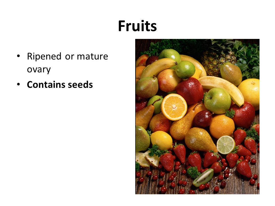 Fruits Ripened or mature ovary Contains seeds