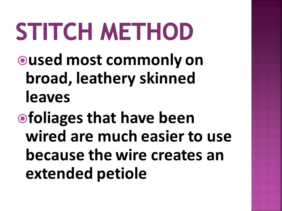 Stitch method used most commonly on broad, leathery skinned leaves