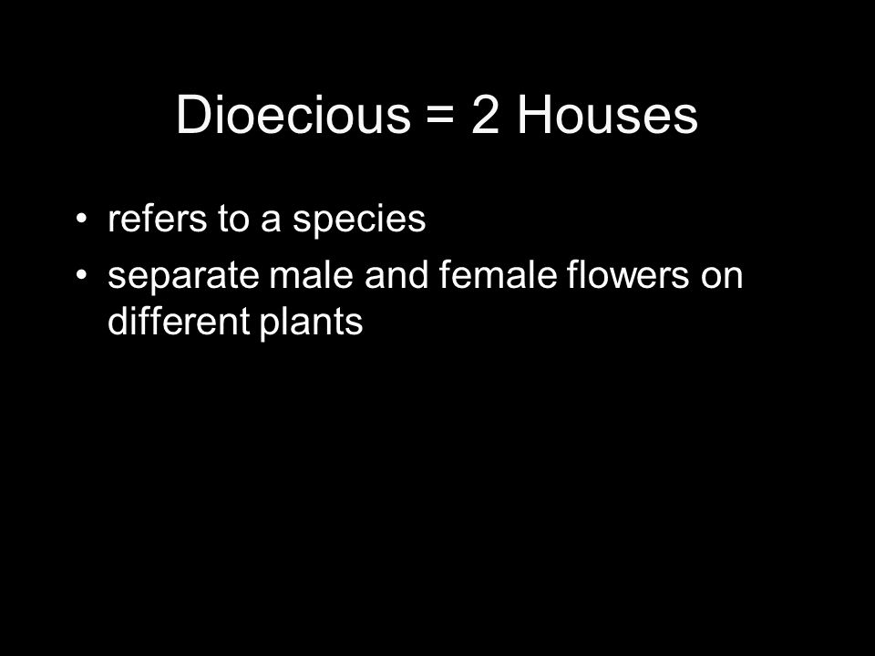 Dioecious = 2 Houses refers to a species