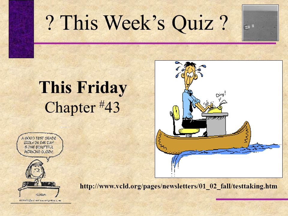 This Week's Quiz This Friday Chapter #43