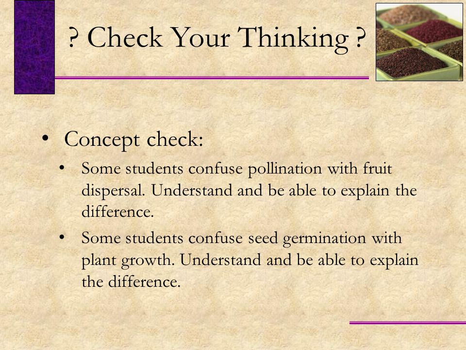 Check Your Thinking Concept check: