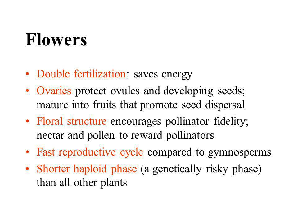 Flowers Double fertilization: saves energy