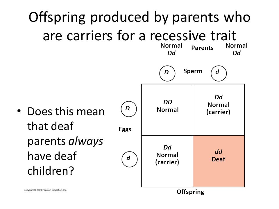 Offspring produced by parents who are carriers for a recessive trait