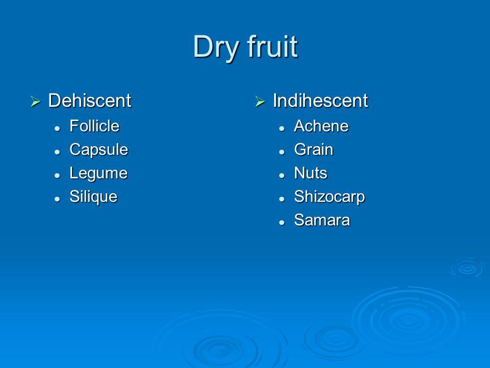 Dry fruit Dehiscent Indihescent Follicle Capsule Legume Silique Achene