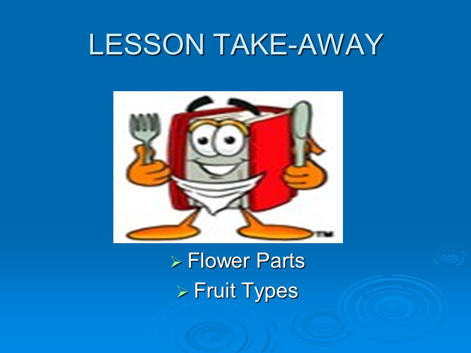 LESSON TAKE-AWAY Flower Parts Fruit Types