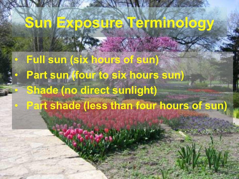 Sun Exposure Terminology