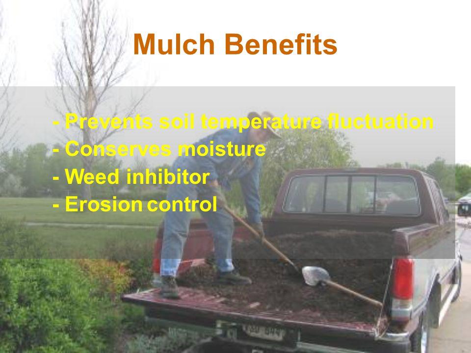 Mulch Benefits - Conserves moisture - Weed inhibitor - Erosion control