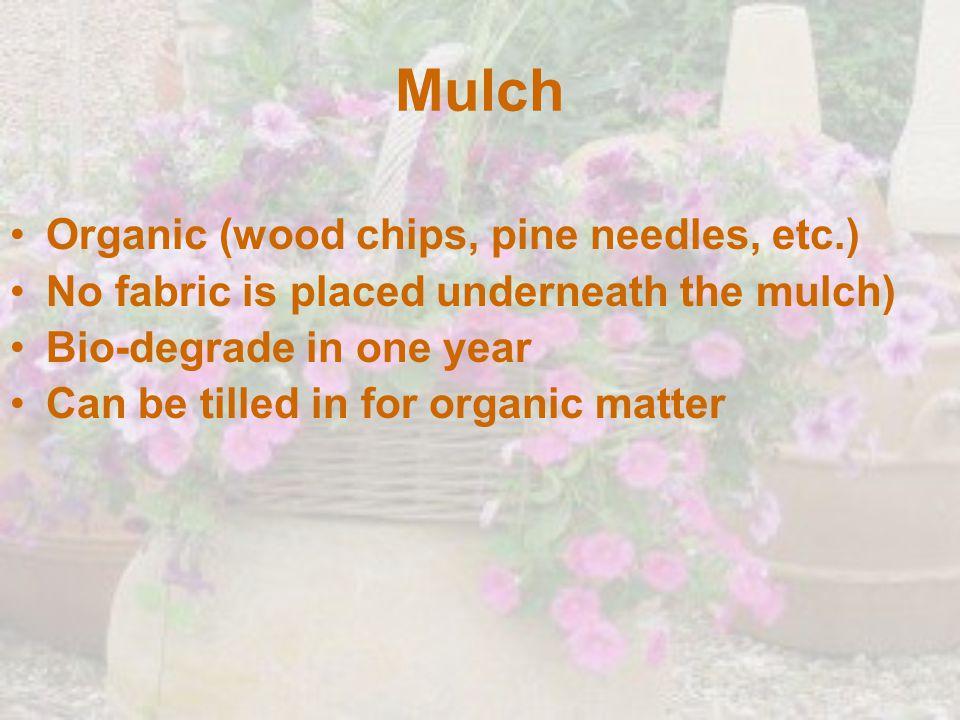 Mulch Organic (wood chips, pine needles, etc.)
