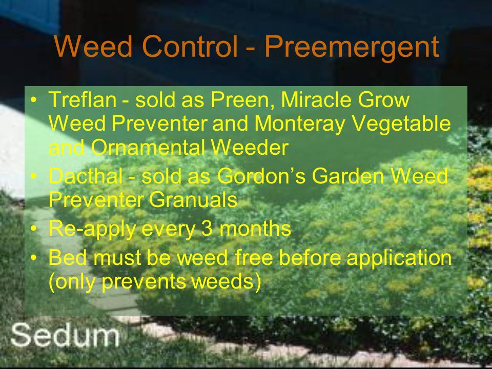 Weed Control - Preemergent