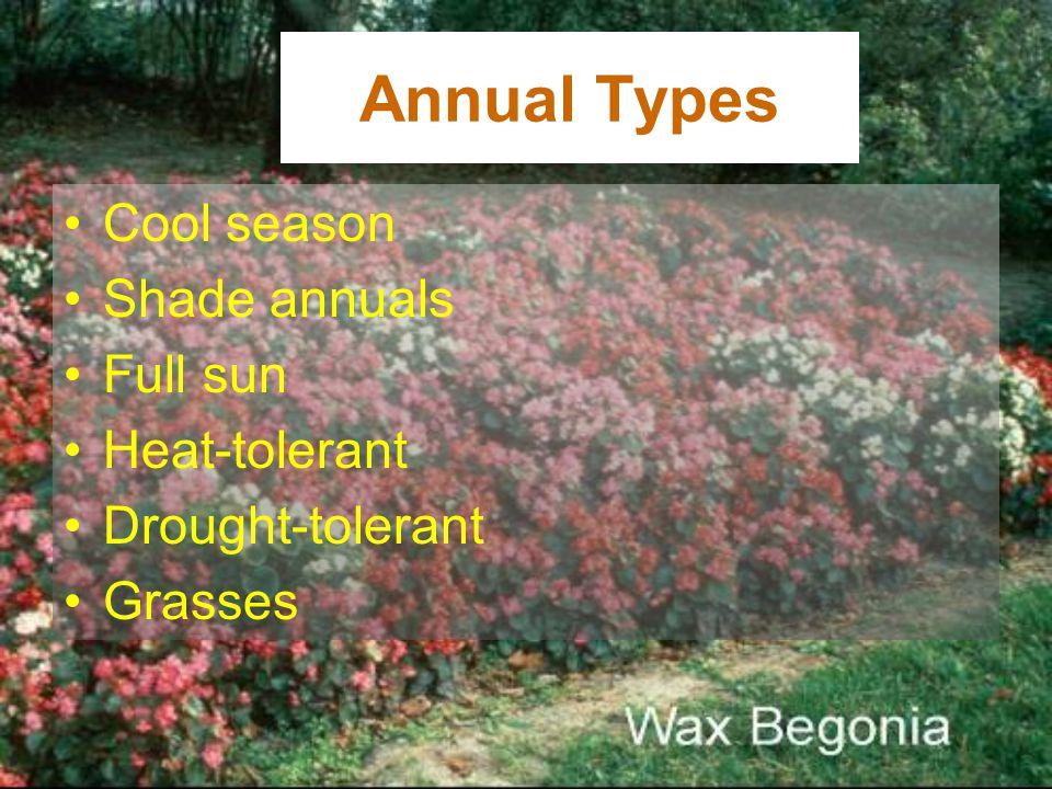 Annual Types Cool season Shade annuals Full sun Heat-tolerant
