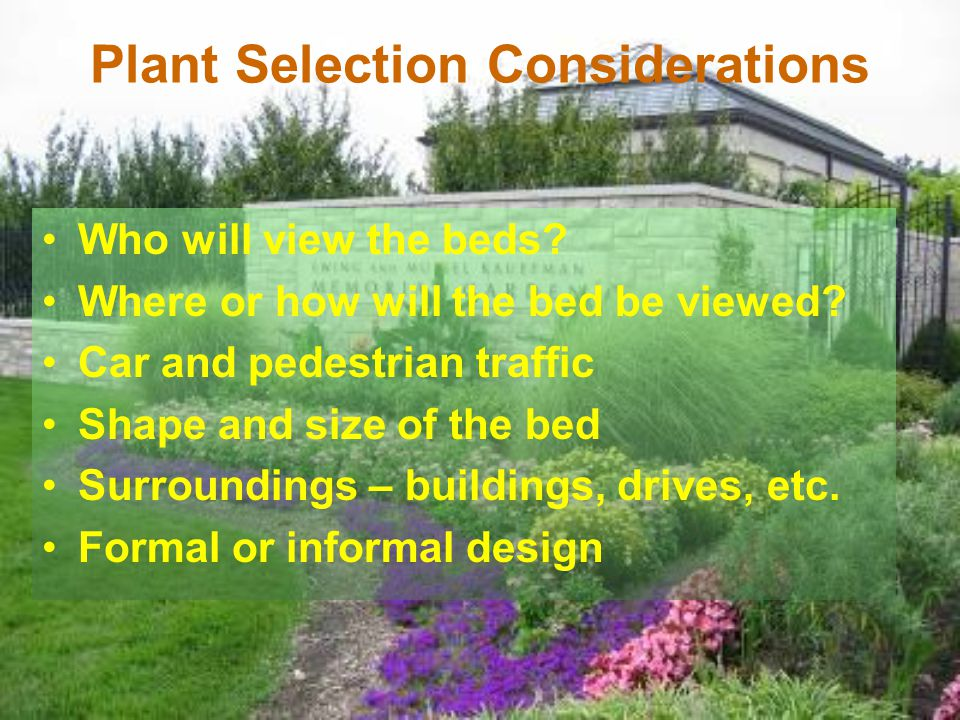 Plant Selection Considerations