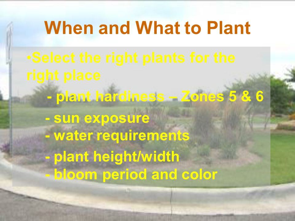 When and What to Plant Select the right plants for the right place
