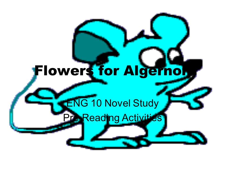 ENG 10 Novel Study Pre-Reading Activities