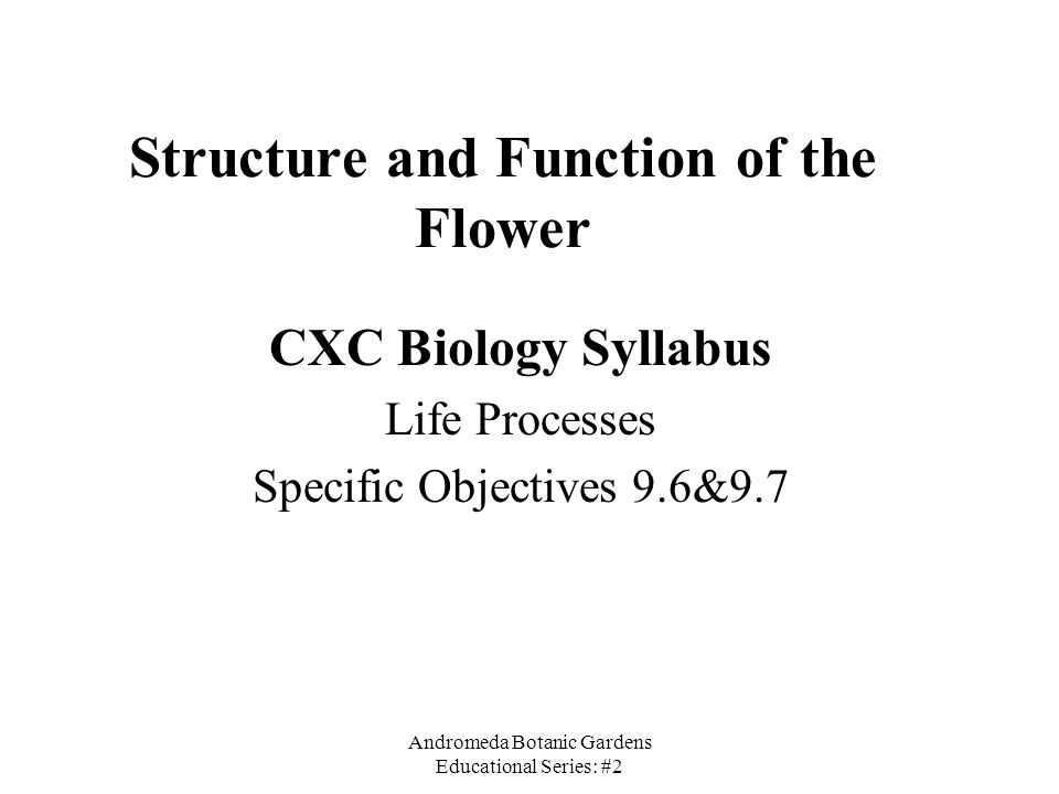 Structure and Function of the Flower