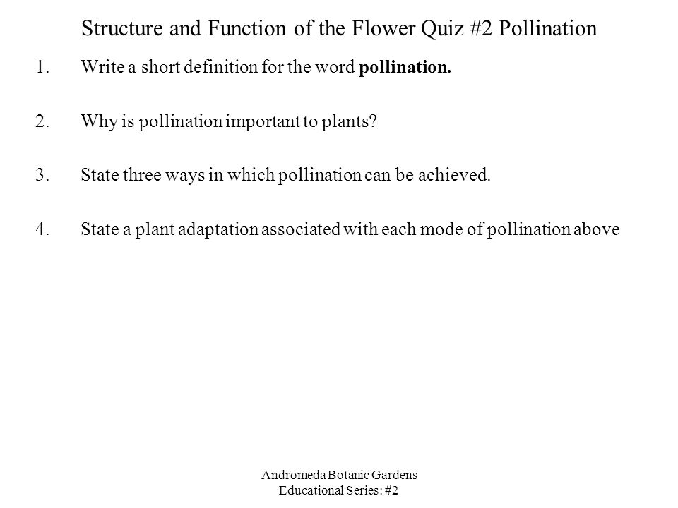 Structure and Function of the Flower Quiz #2 Pollination