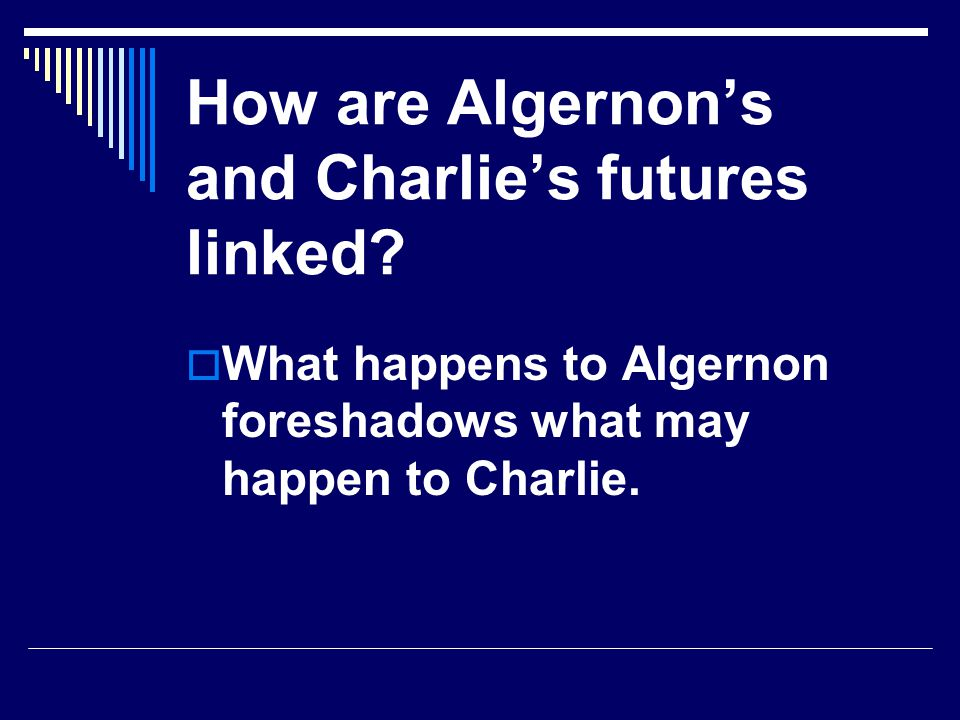 How are Algernon's and Charlie's futures linked