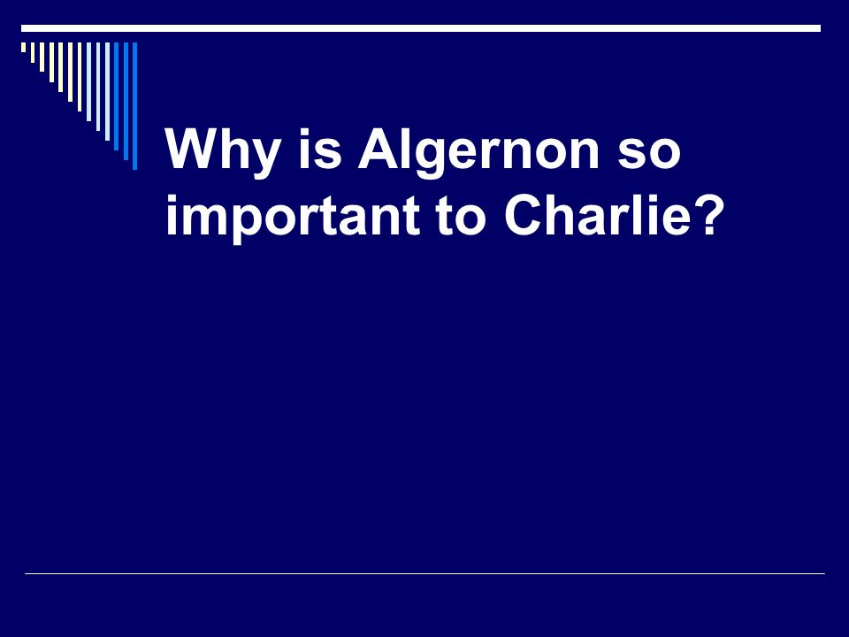 Why is Algernon so important to Charlie