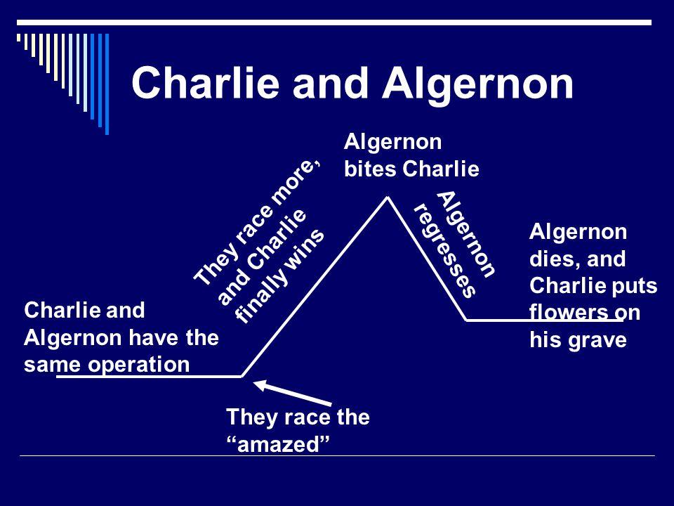 Charlie and Algernon Algernon bites Charlie