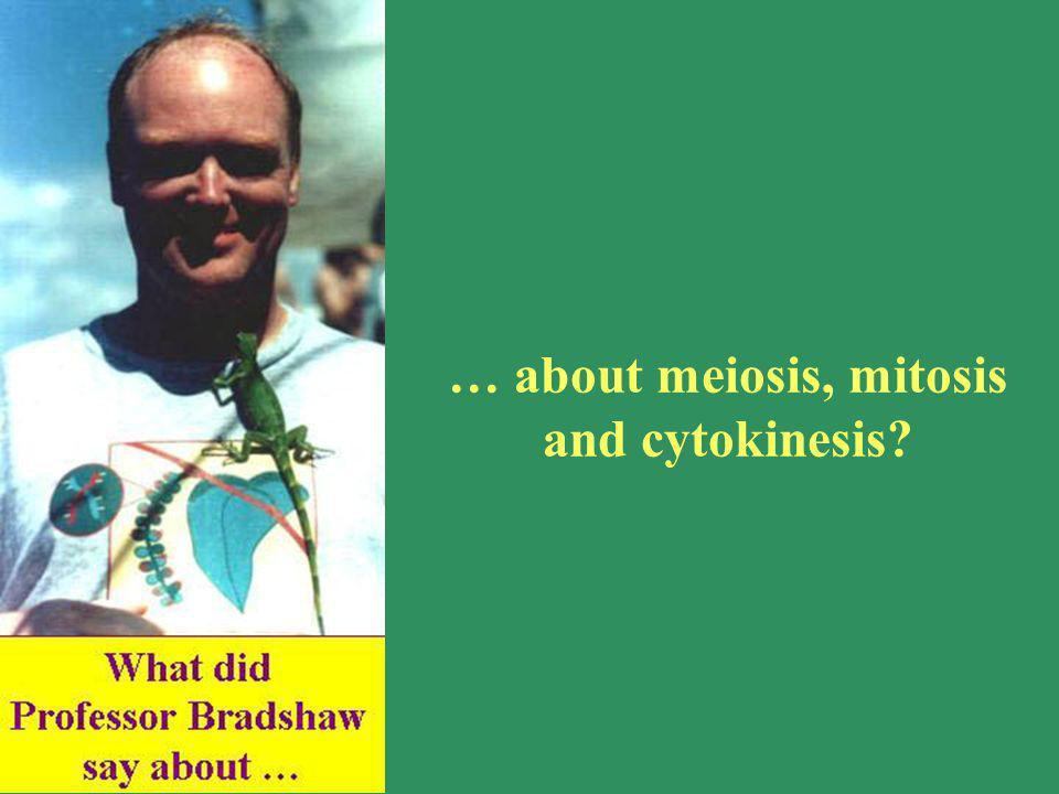 … about meiosis, mitosis and cytokinesis