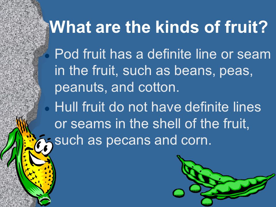 What are the kinds of fruit