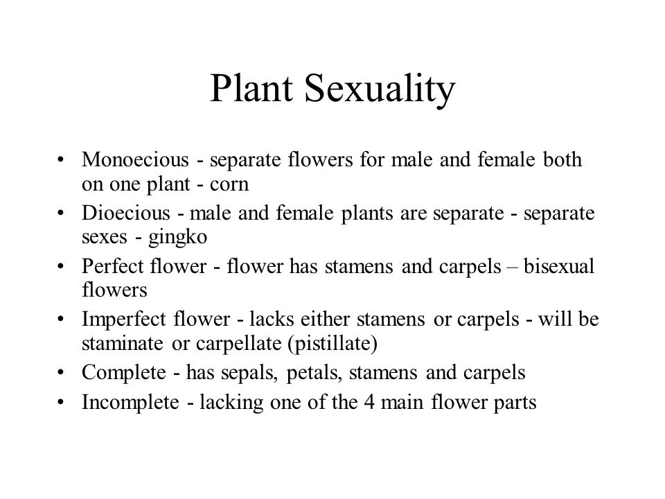 Plant Sexuality Monoecious - separate flowers for male and female both on one plant - corn.