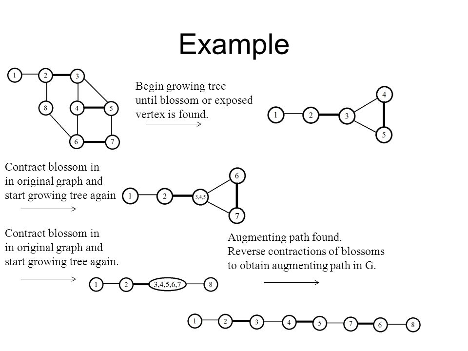Example Begin growing tree until blossom or exposed vertex is found.