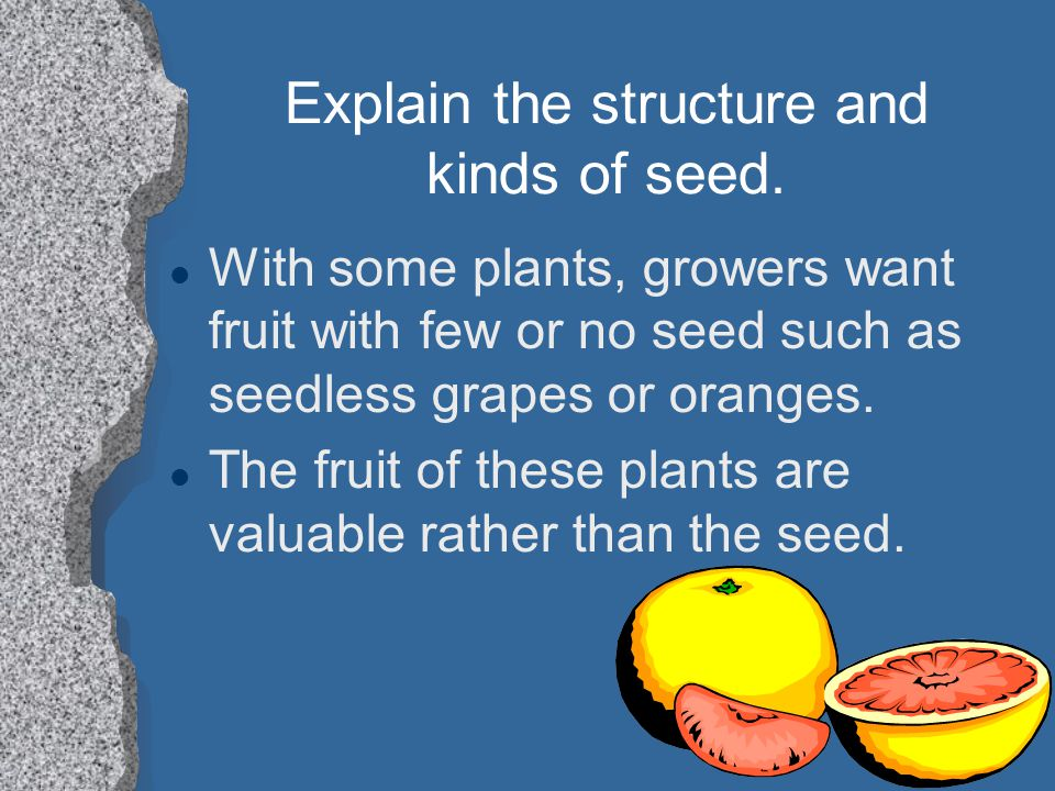 Explain the structure and kinds of seed.