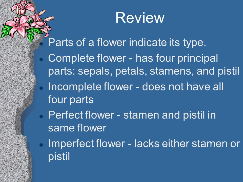 Review Parts of a flower indicate its type.