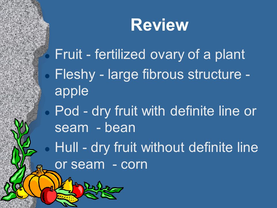 Review Fruit - fertilized ovary of a plant