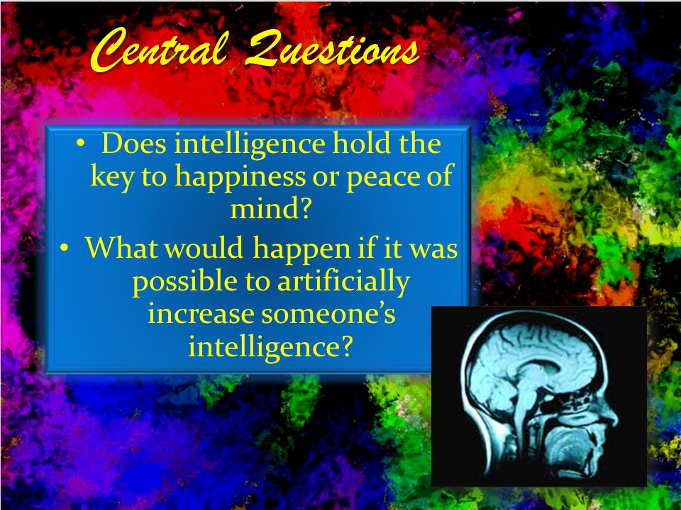Does intelligence hold the key to happiness or peace of mind