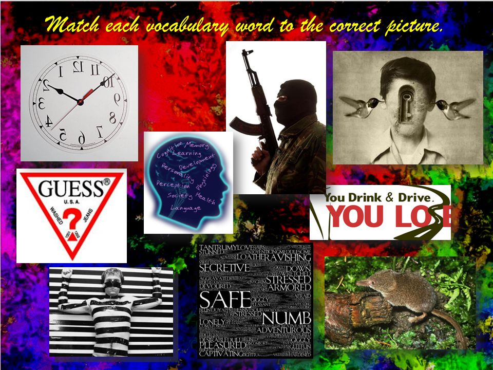 Match each vocabulary word to the correct picture.