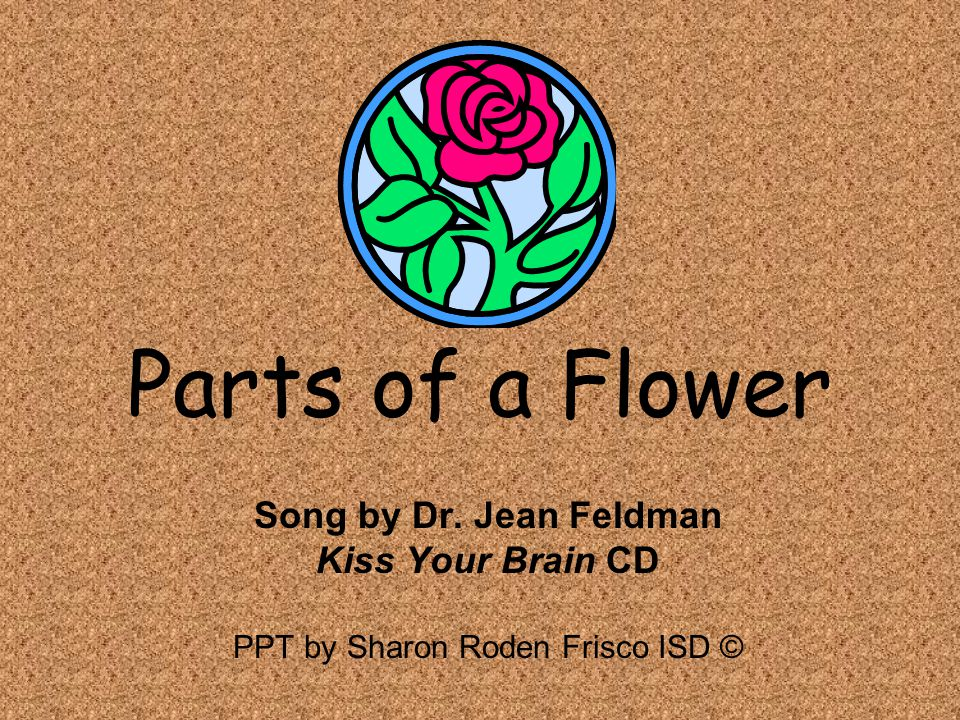 PPT by Sharon Roden Frisco ISD ©